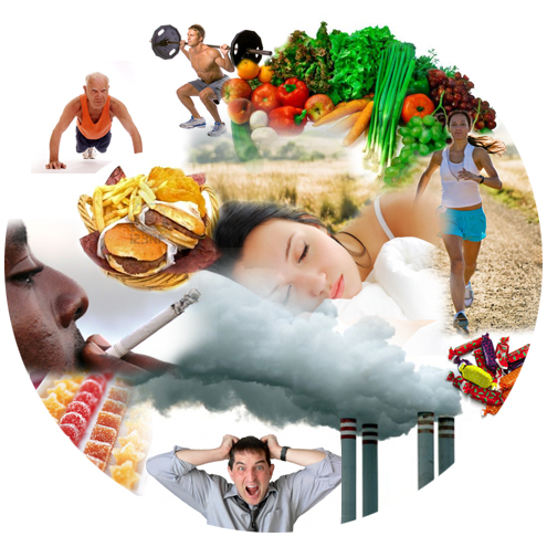 How to Get the Benefits of Healthy Living